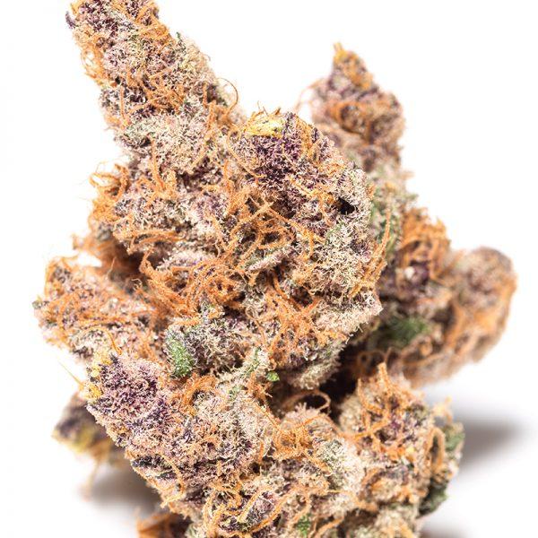 Purple Wookie
